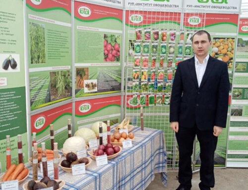 Интервью директора Чайковского А.И. каналу Беларусь 1